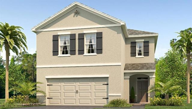10209 Mangrove Well Road, Sun City Center, FL 33573 (MLS #T3144037) :: Medway Realty