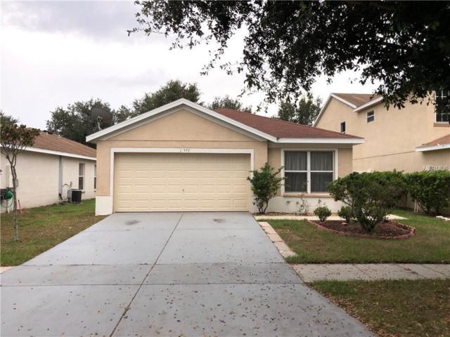 11577 Hammocks Glade Drive, Riverview, FL 33569 (MLS #T3144075) :: The Duncan Duo Team
