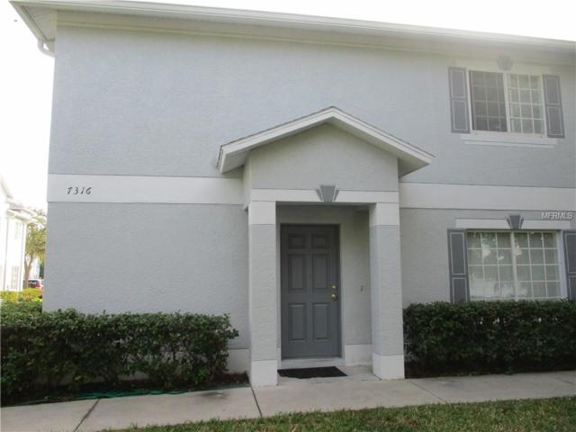 7316 E Bank Drive, Tampa, FL 33617 (MLS #T3144187) :: The Duncan Duo Team