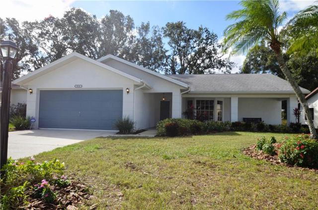 3524 E Links Court, Palm Harbor, FL 34684 (MLS #T3144213) :: Homepride Realty Services