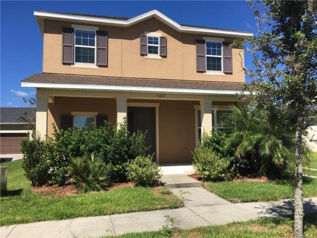 5215 Suncatcher Drive, Wesley Chapel, FL 33545 (MLS #T3144351) :: The Duncan Duo Team