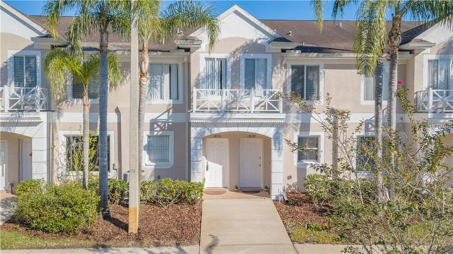 18191 Paradise Point Drive, Tampa, FL 33647 (MLS #T3144363) :: Medway Realty