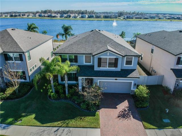1926 Nature View Drive, Lutz, FL 33558 (MLS #T3144374) :: The Duncan Duo Team