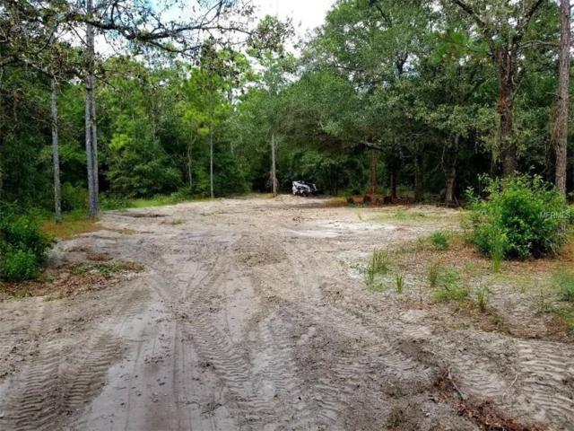 18607 Moorhaven Drive, Spring Hill, FL 34610 (MLS #T3144384) :: The Duncan Duo Team