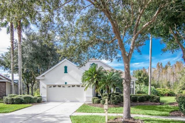 10104 Evergreen Hill Drive, Tampa, FL 33647 (MLS #T3144408) :: Team Bohannon Keller Williams, Tampa Properties