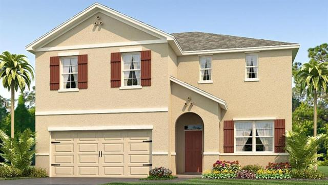 10331 Geese Trail Circle, Sun City Center, FL 33573 (MLS #T3144484) :: Medway Realty