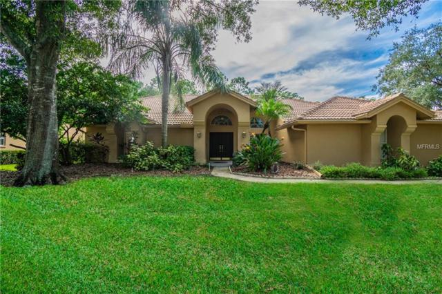 17818 Grey Brooke Drive, Tampa, FL 33647 (MLS #T3144485) :: Medway Realty