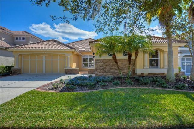 11616 Bristol Chase Drive, Tampa, FL 33626 (MLS #T3144501) :: Andrew Cherry & Company