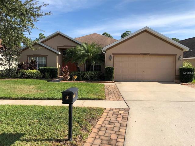 16527 Bridgewalk Drive, Lithia, FL 33547 (MLS #T3144564) :: Medway Realty