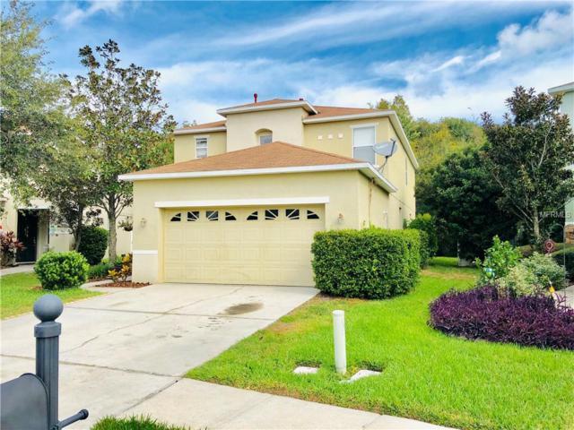 2420 Spring Hollow Loop, Wesley Chapel, FL 33544 (MLS #T3144580) :: Team Bohannon Keller Williams, Tampa Properties