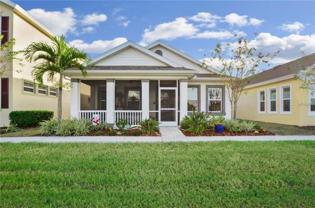 609 Winterside Drive, Apollo Beach, FL 33572 (MLS #T3144643) :: Premium Properties Real Estate Services