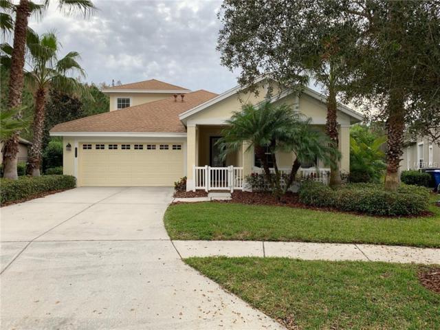 20044 Heritage Point Drive, Tampa, FL 33647 (MLS #T3144778) :: Team Bohannon Keller Williams, Tampa Properties