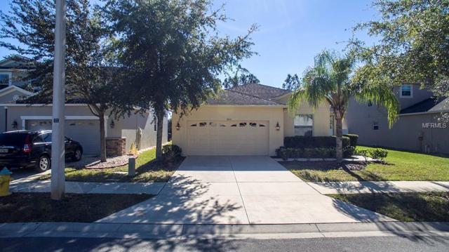 10611 Lucaya Drive, Tampa, FL 33647 (MLS #T3144866) :: Cartwright Realty