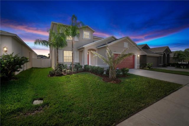 12421 Ballentrae Forest Drive, Riverview, FL 33579 (MLS #T3144892) :: Premium Properties Real Estate Services