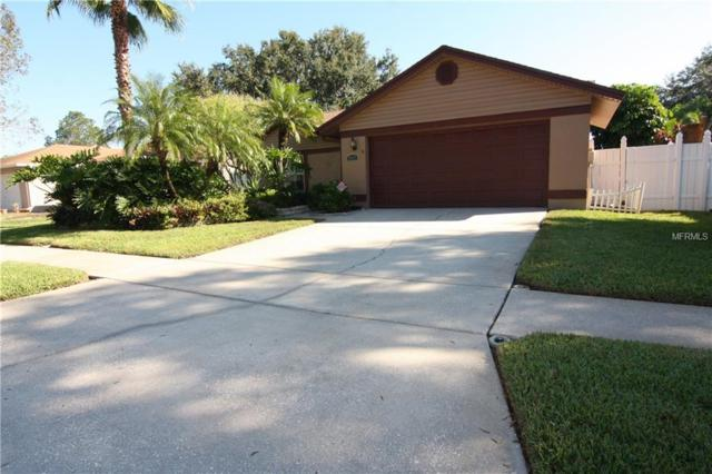 8807 Hampden Drive, Tampa, FL 33626 (MLS #T3144922) :: Gate Arty & the Group - Keller Williams Realty