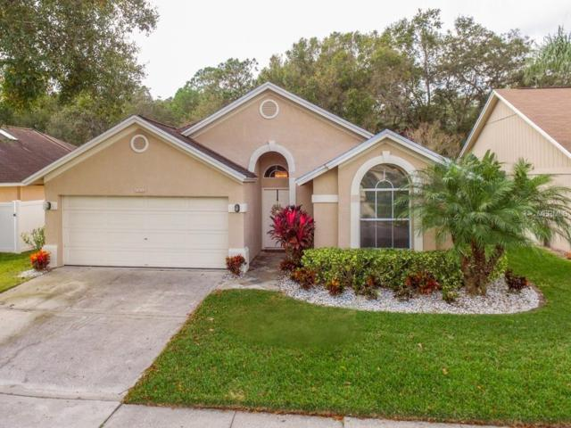 13414 Eudora Place, Tampa, FL 33626 (MLS #T3144998) :: Griffin Group