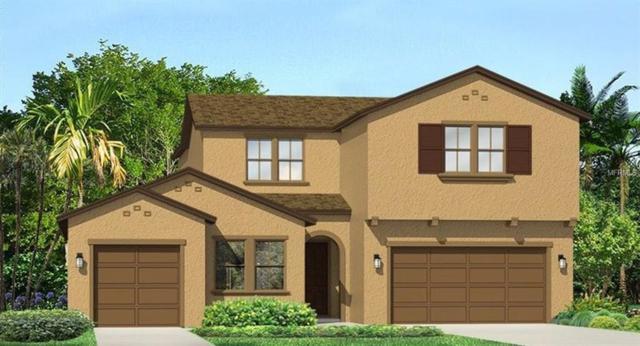 17923 Woodland View Drive, Lutz, FL 33548 (MLS #T3145018) :: Team Suzy Kolaz