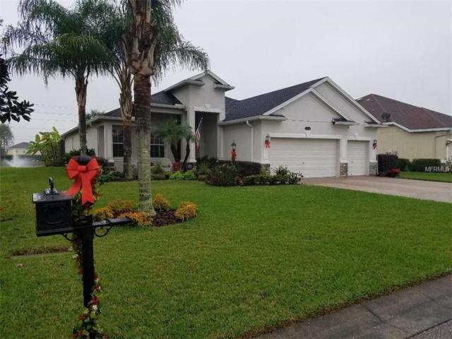 Address Not Published, Plant City, FL 33566 (MLS #T3145083) :: The Duncan Duo Team