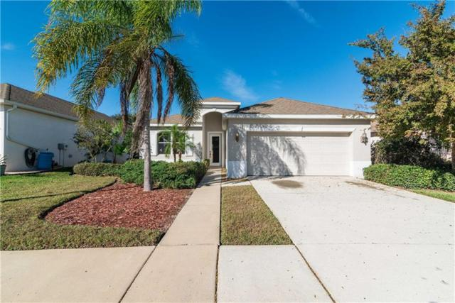 14231 Beauly Circle, Hudson, FL 34667 (MLS #T3145206) :: Premium Properties Real Estate Services