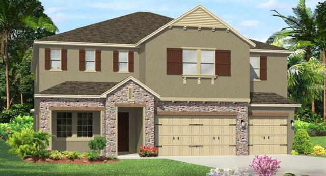 4390 Casella Drive, Wesley Chapel, FL 33543 (MLS #T3145235) :: Team Bohannon Keller Williams, Tampa Properties