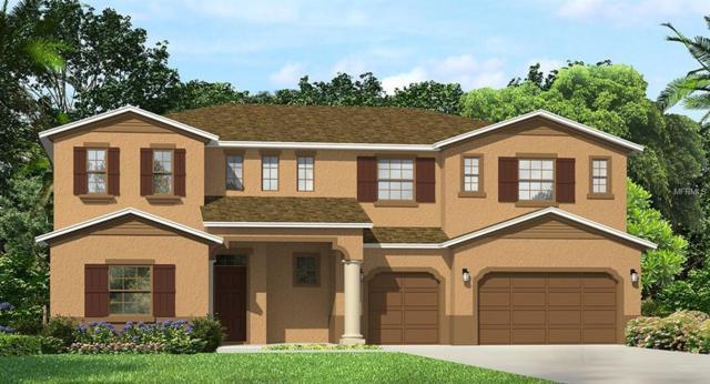 28966 Picana Lane, Wesley Chapel, FL 33543 (MLS #T3145305) :: Team Bohannon Keller Williams, Tampa Properties