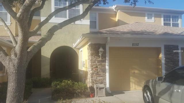 8152 Stone Leaf Lane, Tampa, FL 33647 (MLS #T3145307) :: Team Bohannon Keller Williams, Tampa Properties