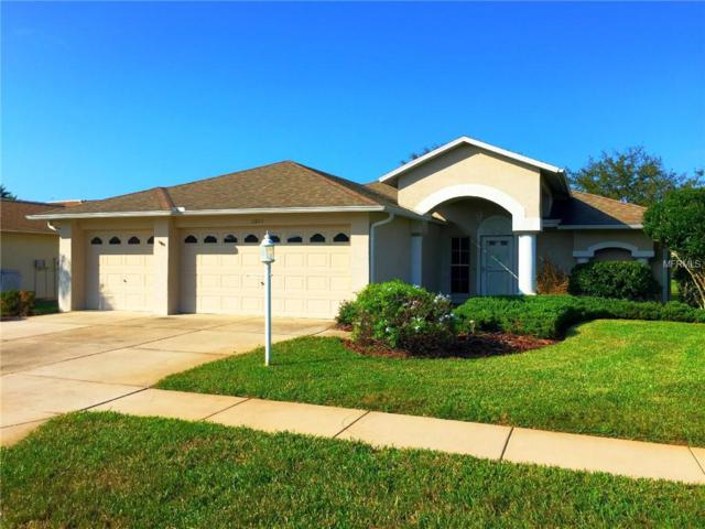 11801 Washburn Place, Trinity, FL 34655 (MLS #T3145382) :: RE/MAX CHAMPIONS