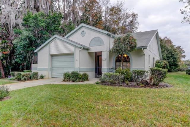 11712 Alderwood Drive, New Port Richey, FL 34654 (MLS #T3145416) :: Remax Alliance