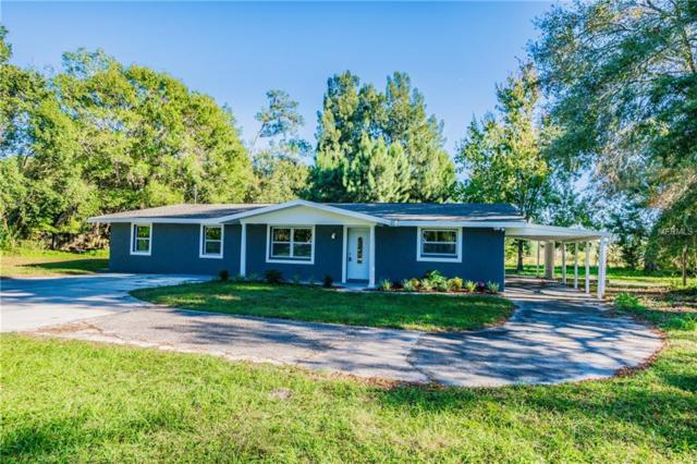 9724 Lakeview Drive, New Port Richey, FL 34654 (MLS #T3145419) :: Premium Properties Real Estate Services