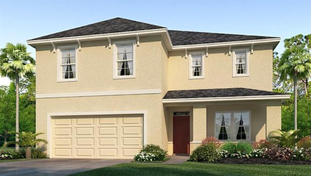 9274 Watolla Drive, Thonotosassa, FL 33592 (MLS #T3145434) :: Jeff Borham & Associates at Keller Williams Realty