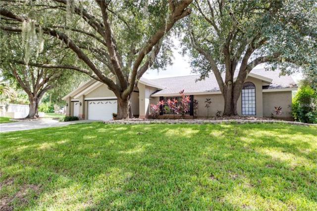 16211 Belle Meade Boulevard, Odessa, FL 33556 (MLS #T3145447) :: Team Bohannon Keller Williams, Tampa Properties