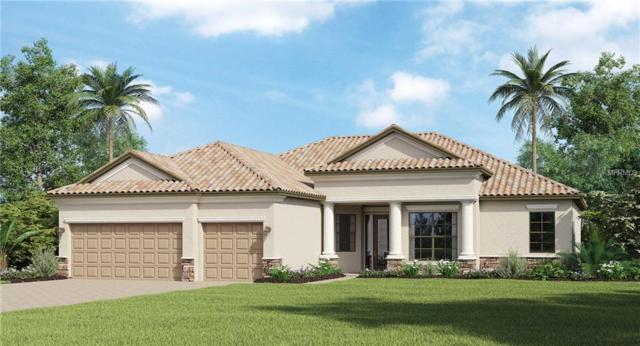 20378 Passagio Drive, Venice, FL 34293 (MLS #T3145449) :: Premium Properties Real Estate Services