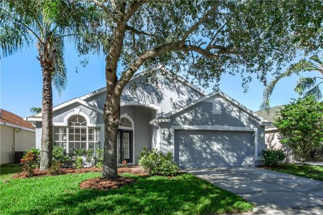 12213 Coldstream Lane, Tampa, FL 33626 (MLS #T3145471) :: Andrew Cherry & Company