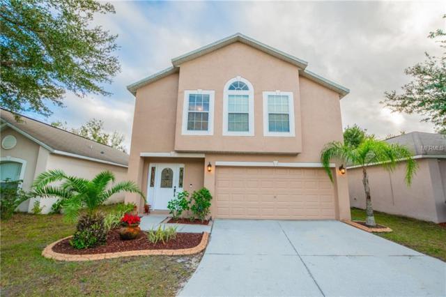 30426 Birdhouse Drive, Wesley Chapel, FL 33545 (MLS #T3145640) :: RE/MAX CHAMPIONS
