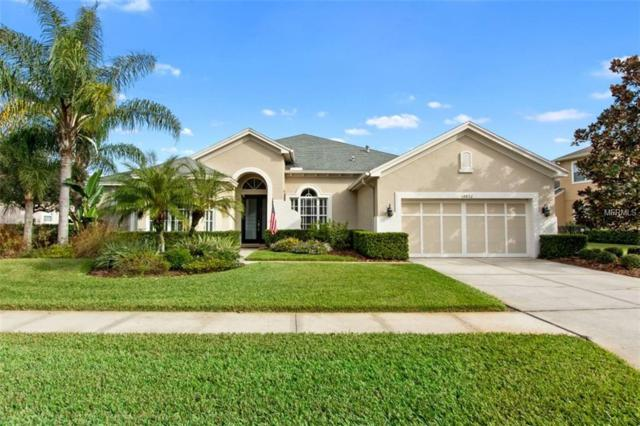 14852 Tudor Chase Drive, Tampa, FL 33626 (MLS #T3145691) :: Gate Arty & the Group - Keller Williams Realty