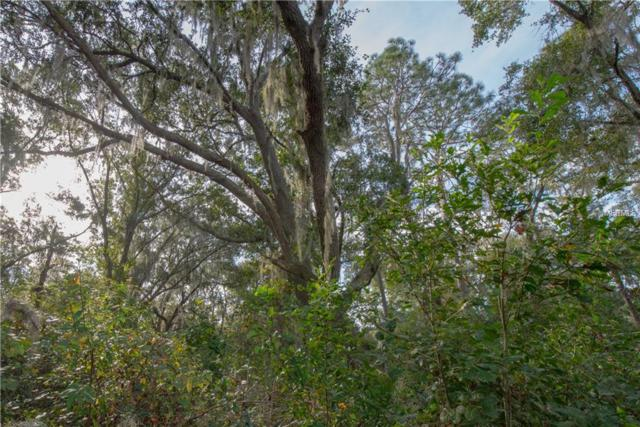 0 Pelote Cemetery Road, Lithia, FL 33547 (MLS #T3145711) :: Mark and Joni Coulter | Better Homes and Gardens