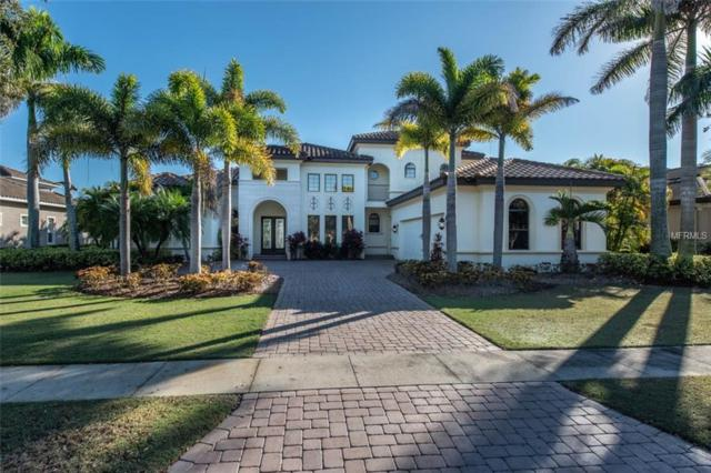 5417 Tybee Island Drive, Apollo Beach, FL 33572 (MLS #T3145713) :: Medway Realty