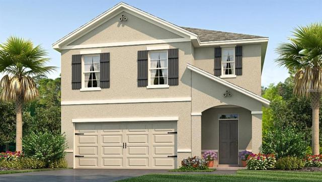 1818 Greenwood Valley Drive, Plant City, FL 33563 (MLS #T3145718) :: The Duncan Duo Team