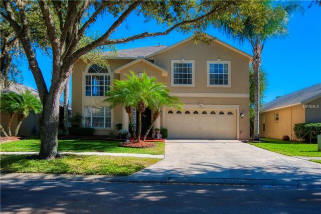 18915 Bellflower Road, Tampa, FL 33647 (MLS #T3145733) :: Andrew Cherry & Company