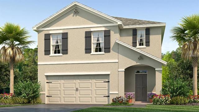 2331 Ashberry Ridge Drive, Plant City, FL 33563 (MLS #T3145743) :: The Duncan Duo Team