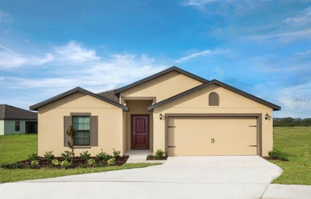 35807 Rose Moss Avenue, Leesburg, FL 34788 (MLS #T3145782) :: Team Bohannon Keller Williams, Tampa Properties