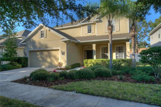 3205 Lake Green Court, Tampa, FL 33611 (MLS #T3145797) :: The Duncan Duo Team