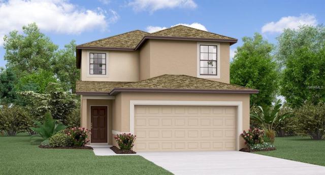 4002 Cat Mint Street, Tampa, FL 33619 (MLS #T3145872) :: Medway Realty