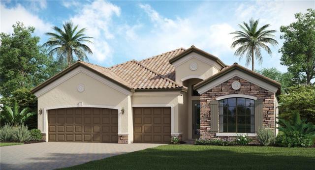 3013 Starwood Court, Bradenton, FL 34211 (MLS #T3145894) :: Medway Realty