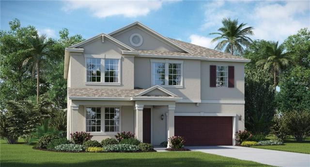 13649 Ashlar Slate Place, Riverview, FL 33579 (MLS #T3145895) :: Medway Realty
