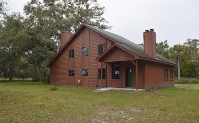 4545 Meadowood Drive, Mulberry, FL 33860 (MLS #T3145906) :: Revolution Real Estate