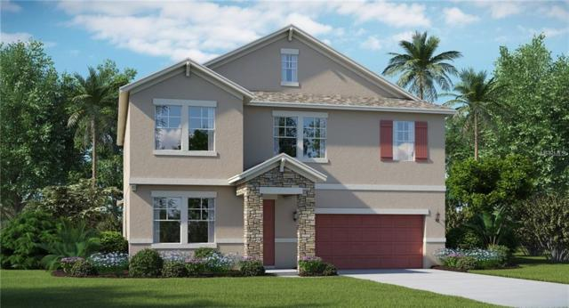 13653 Ashlar Slate Place, Riverview, FL 33579 (MLS #T3145910) :: Medway Realty