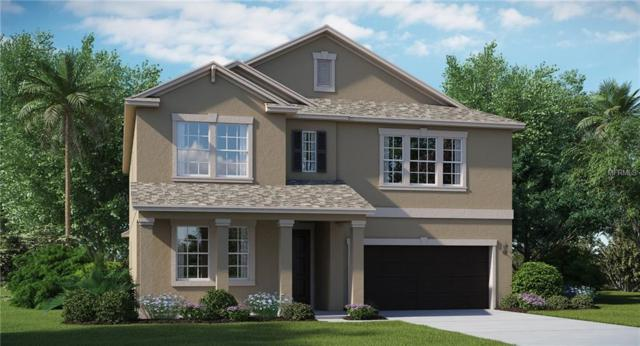 13646 Ashlar Slate Place, Riverview, FL 33579 (MLS #T3145925) :: The Duncan Duo Team