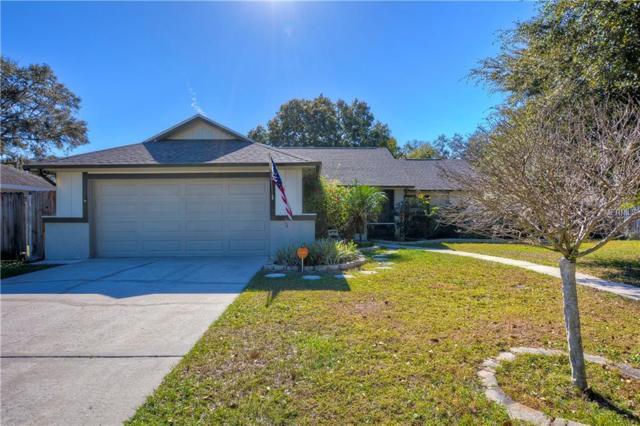 7245 Woodbrook Drive, Tampa, FL 33625 (MLS #T3145934) :: Cartwright Realty
