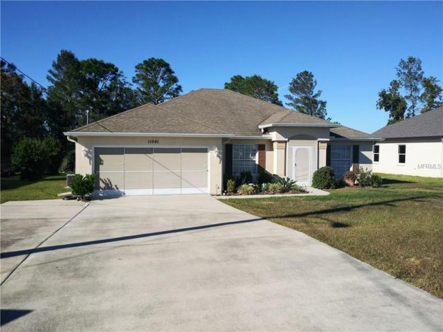 11041 Norvell Road, Spring Hill, FL 34608 (MLS #T3145953) :: The Duncan Duo Team